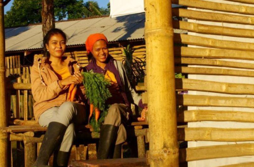 Kisah Petani Milenial Kembangkan Bisnis