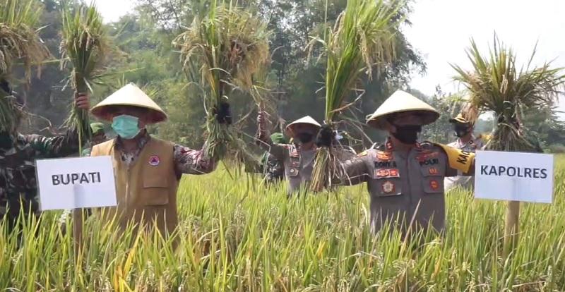 Kabupaten Mojokerto Surplus Ketahanan Pangan Tiap Tahun