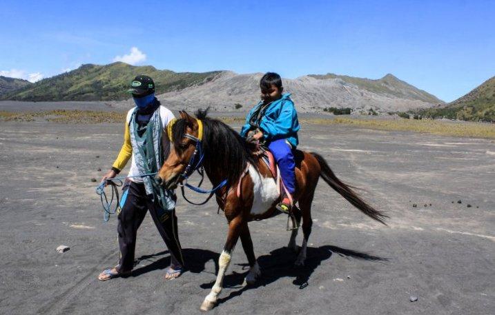 Jasa Sewa Kuda di Bromo Masih Sepi