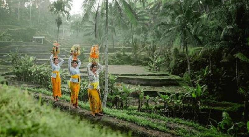 Warga Bali Bertahan di Tengah Pandemi (2)