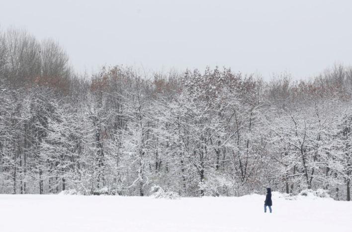 Salju Selimuti Taman Kota