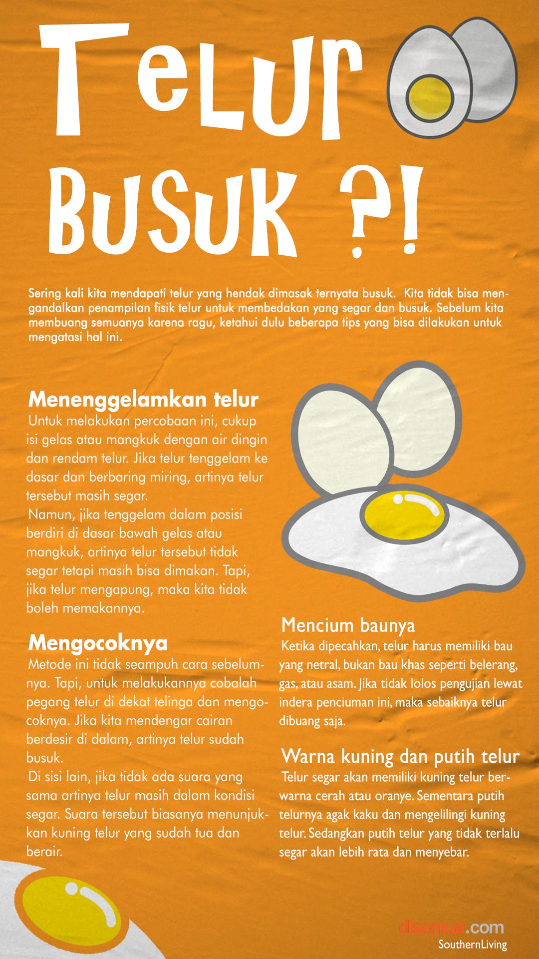 Cara Mengecek Telur Busuk